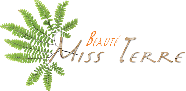 logo Miss Terre